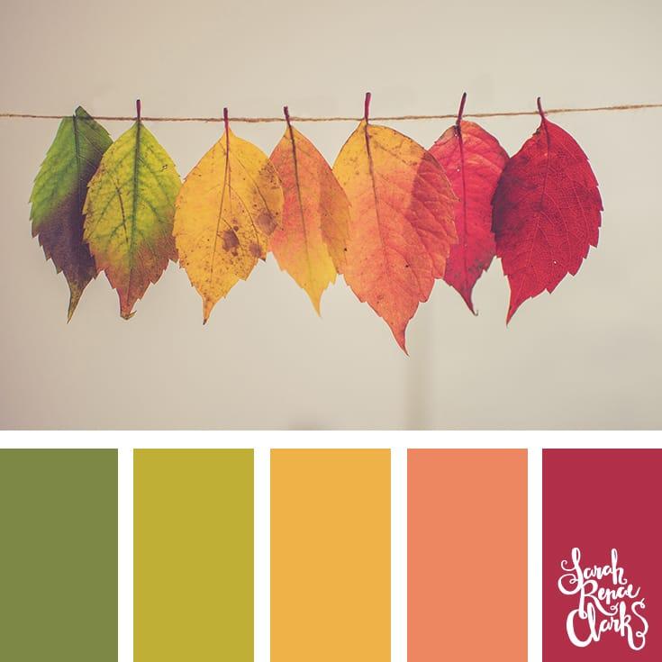 warmcolor palette