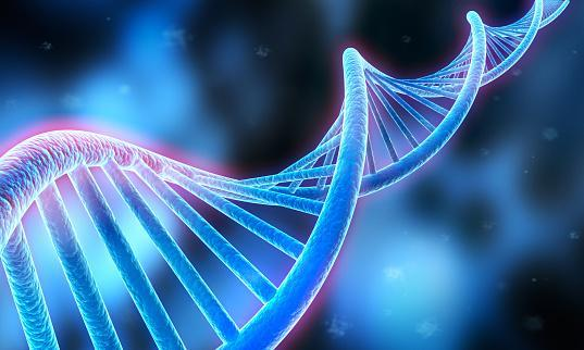https://media.istockphoto.com/photos/sequence-dna-code-structure-medical-3d-illustration-picture-id1173329540?b=1&k=6&m=1173329540&s=170667a&w=0&h=x4E6oez48HYz6kUeuKxOkHbgVAby88sJe6pCOm_kxEk=