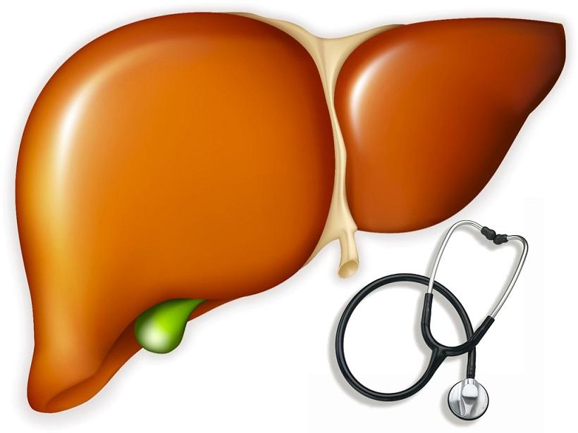 Những bệnh nhân viêm gan không nên tắm nước lá ngải cứu