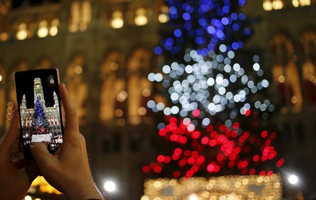 Một du khách chụp cây thông Noel với đèn thắp sáng ba màu trong quốc kỳ Pháp nhằm tưởng nhớ các nạn nhân vụ tấn công Paris ở Vienna, Áo.