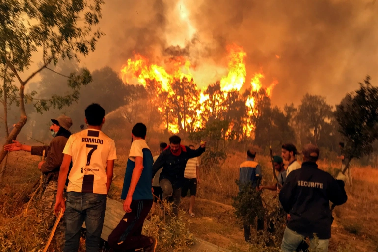 Recent Wildfires in the Arab World