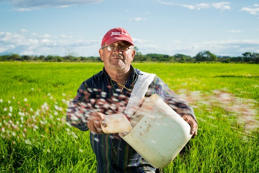 Learn the Facts About Modern Farmers