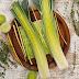 Cỏ xạ  hương ( Common Thyme ,Garden thyme) - Thymus vulgaris ,THY00082