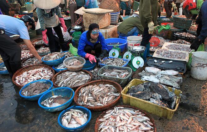 hải sản quan lạn