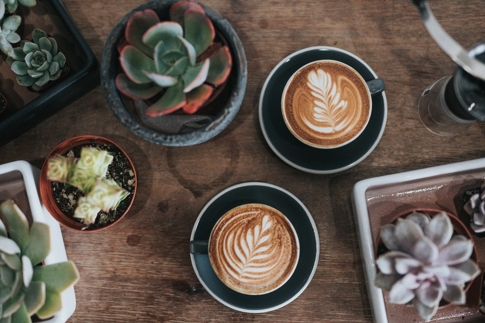 A flatlay of coffees with latte art and succulents on a wooden table