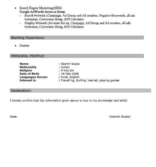 Best Seo Resume Format For Fresher Download Sample Pdf Docs File
