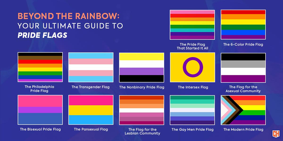 """Přehled většiny """"hrdých vlajek"""". Klasická rainbow je jen jednou z mnoha. Obrázek zobrazuje loga gay, lesbiček, bisexuálů nebo asexuálů"""