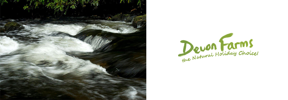 Enjoy the stunning scenery of Doone Valley while on Holiday in Devon.