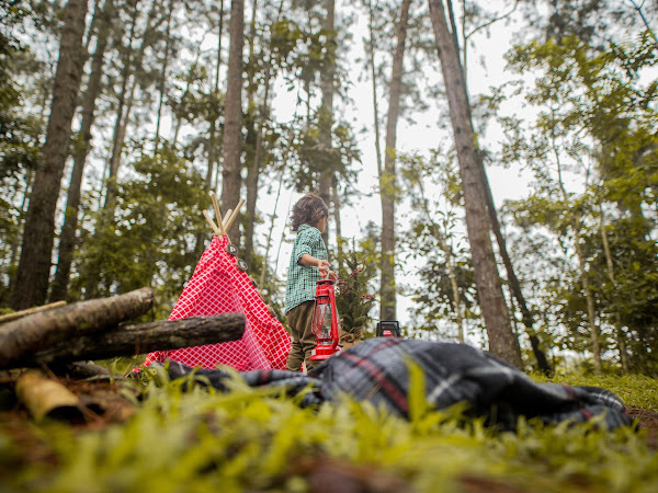 The Top Campsites For Families