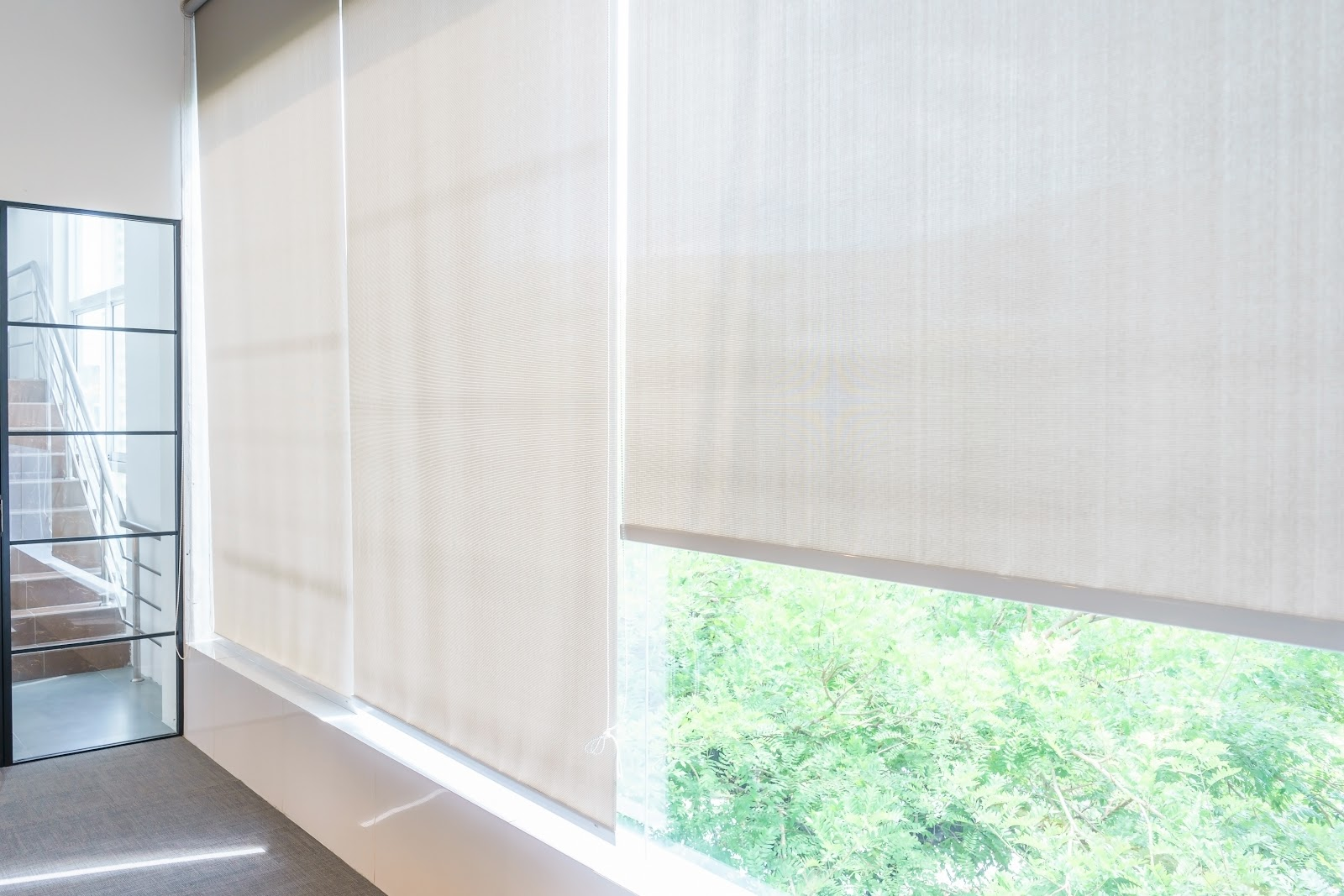 How To Clean Roller Blinds: A Step-by-Step Guide To Sparkling Blinds