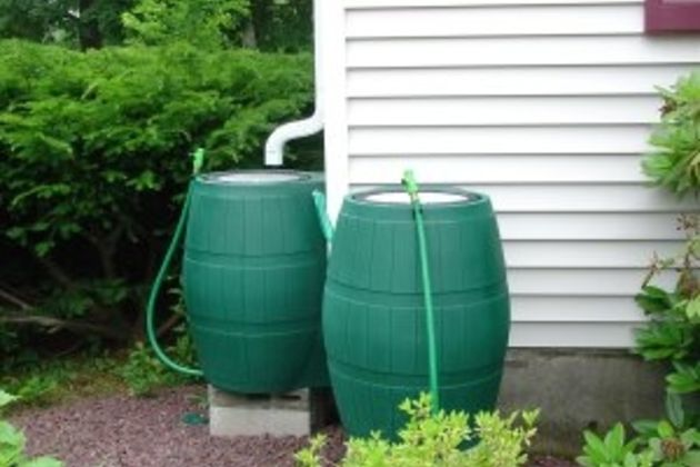 rain barrel green