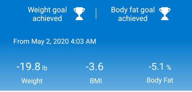 Chart showing a 19 pound weight loss as well as a reduction in BMI and body fat