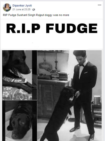 fudge main.png