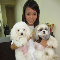June Tan is a professional dog groomer who believes in our shampoo