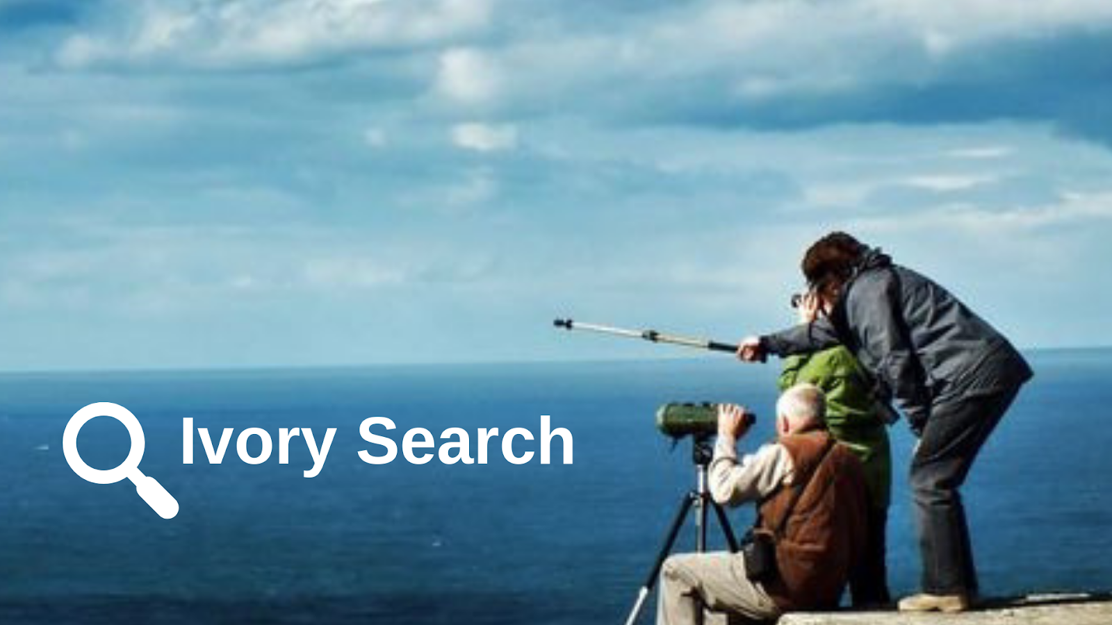 Ivory Search WordPress search plugins