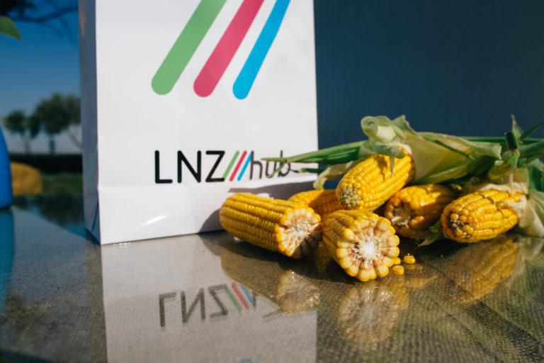 Історія успіху LNZ Group фото 4 LNZ Group