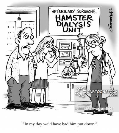 https://s3.amazonaws.com/lowres.cartoonstock.com/animals-animals-hamster-vets-doctor-dialysis-cgon656_low.jpg