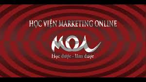 Khóa Hướng Dẫn Học SEO Website Cơ Bản