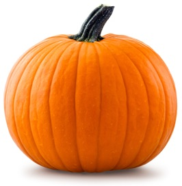small_pumpkin.jpg