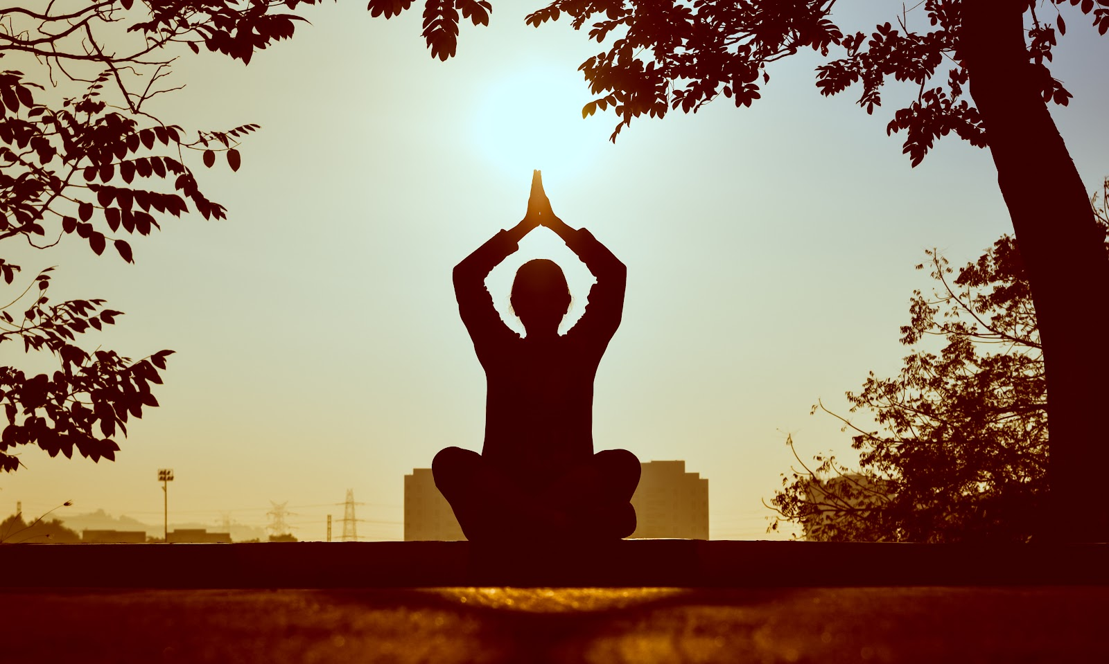 Silhouette of a person doing yoga in a park with the son shining above their clasped hands raised above their head.
