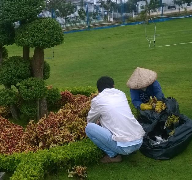 Chi phí nhân công, máy móc, dụng cụ quyết định đến giá dịch vụ thi công mảng xanh ay trồng cây….