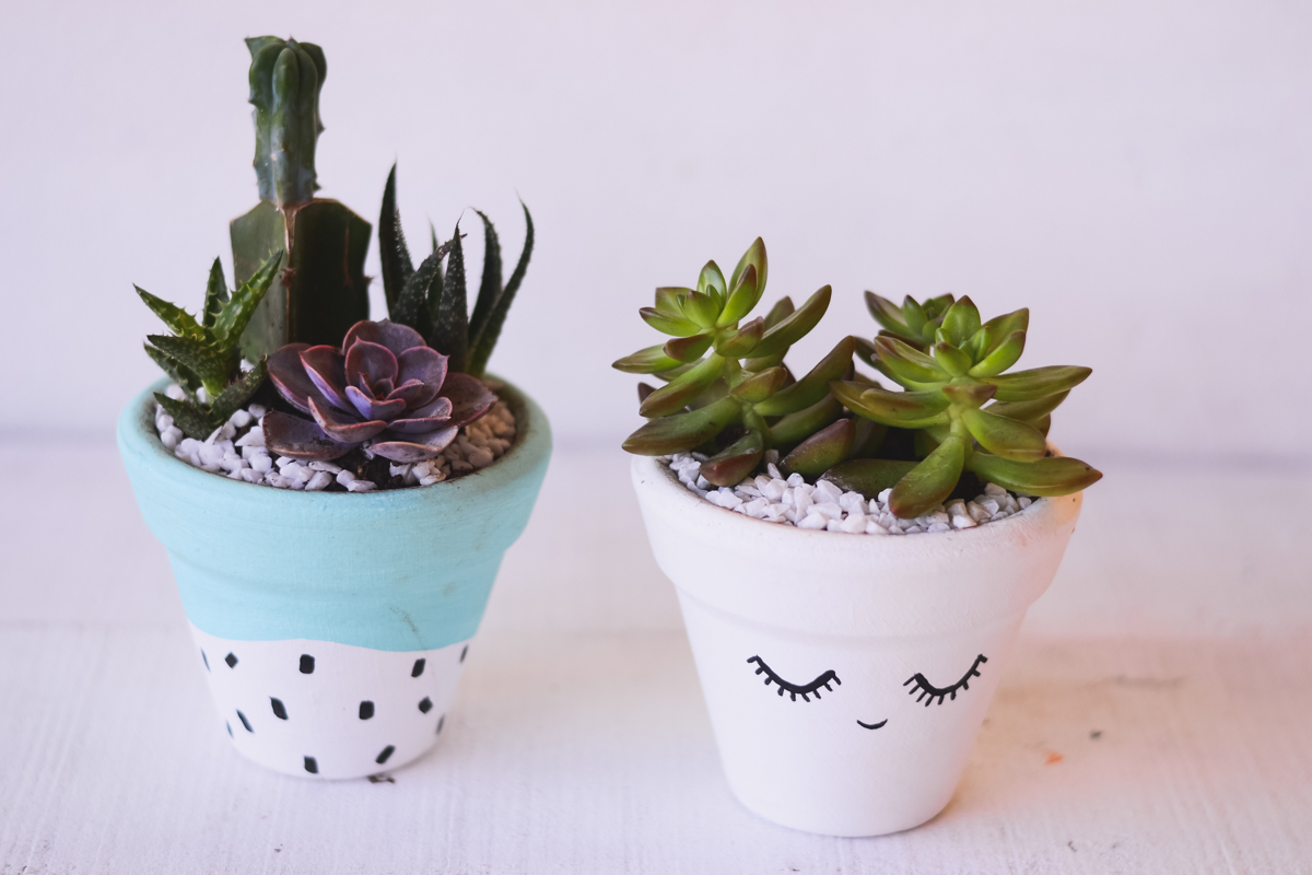 succulent clay vases, a craft that makes money