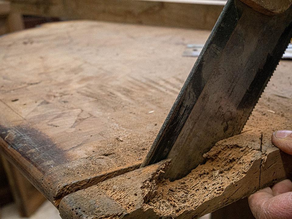 Woran erkennt man einen Holzwurmbefall?