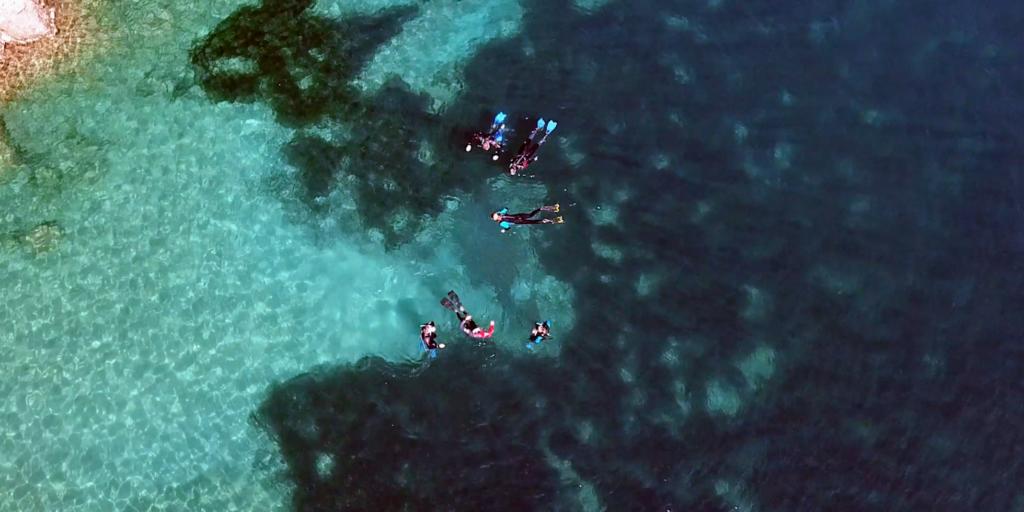Dove Fare Snorkeling