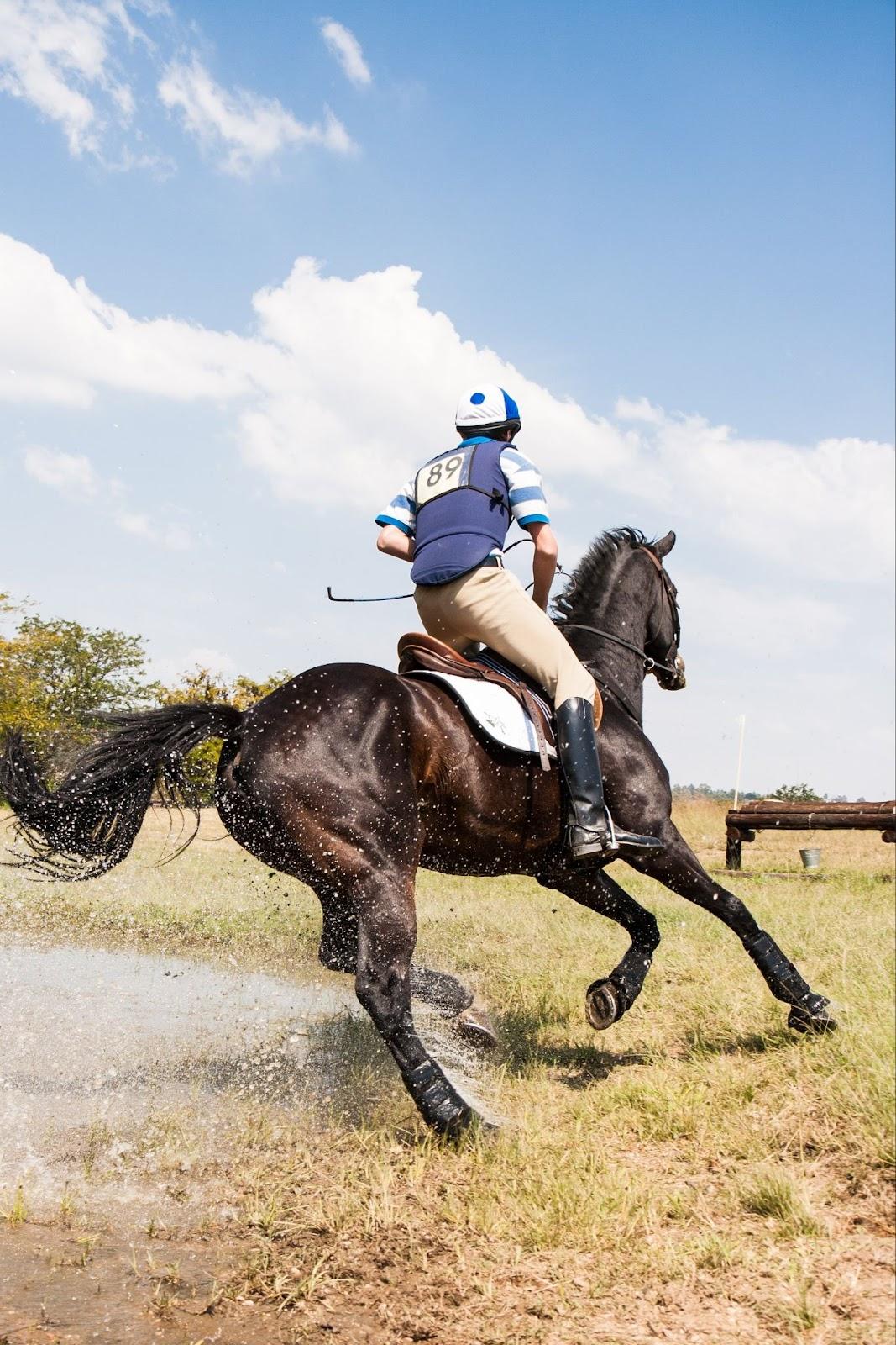 Choisir protège-dos équitation
