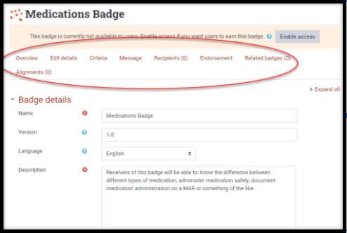 Screenshot showing option tabs for badges