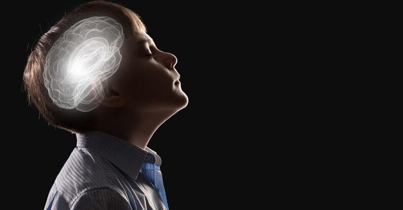 cerebro ninos