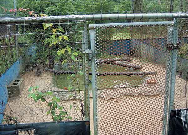 Skirting can be placed around the bottom perimeter of the cage to minimize rodent invasion