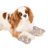 Luxury Puppy Toys, dog towels, designer puppy tags