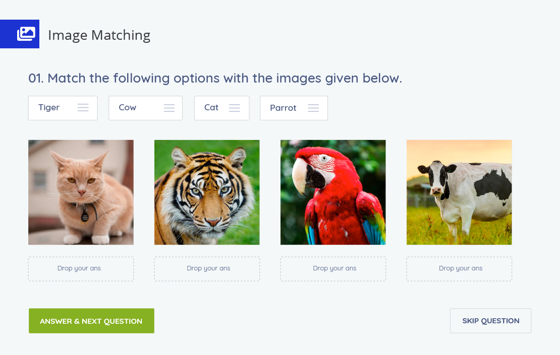 Tutor LMS - Image matching quiz options
