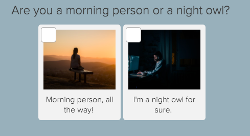 morning person vs night owl question