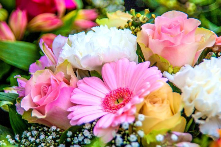 Kết quả hình ảnh cho điện hoa