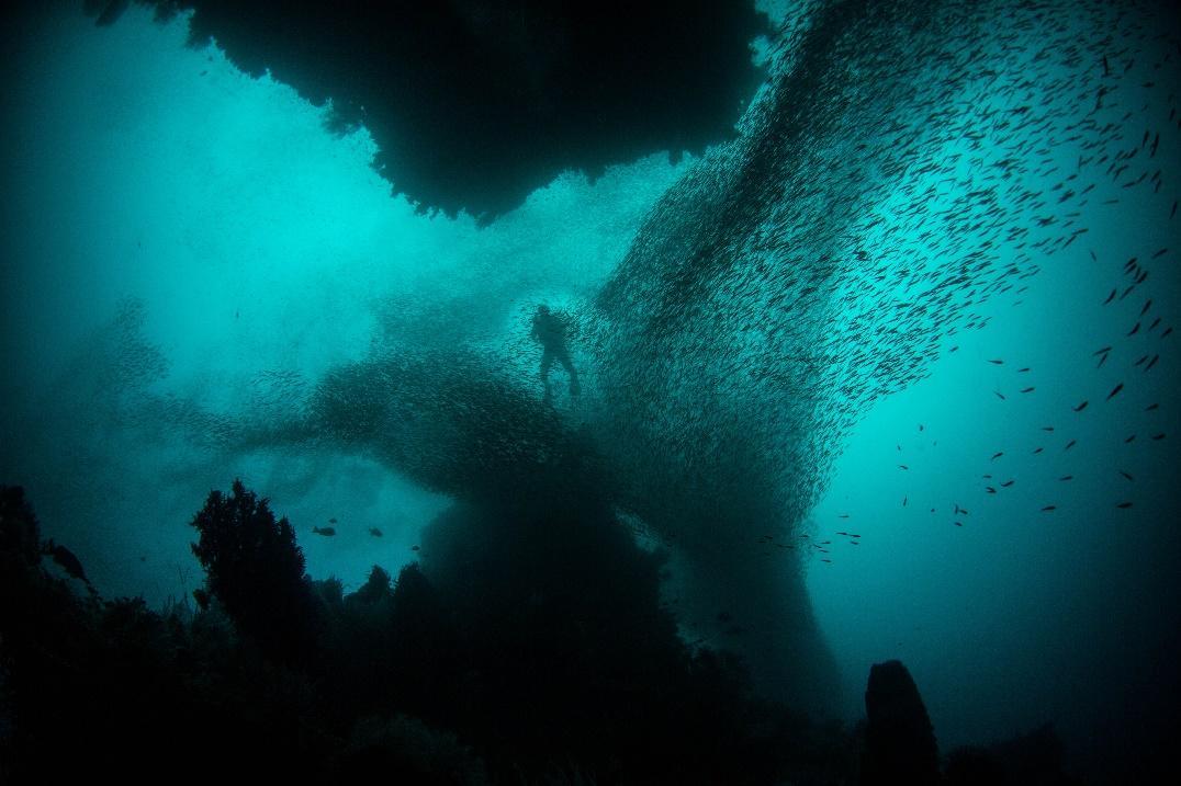 Misool Island Underwater