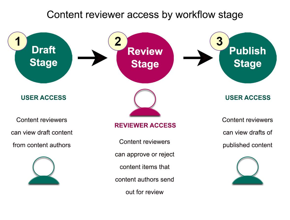 Dịch vụ SEO content kiểm duyệt và xuất bản bài viết