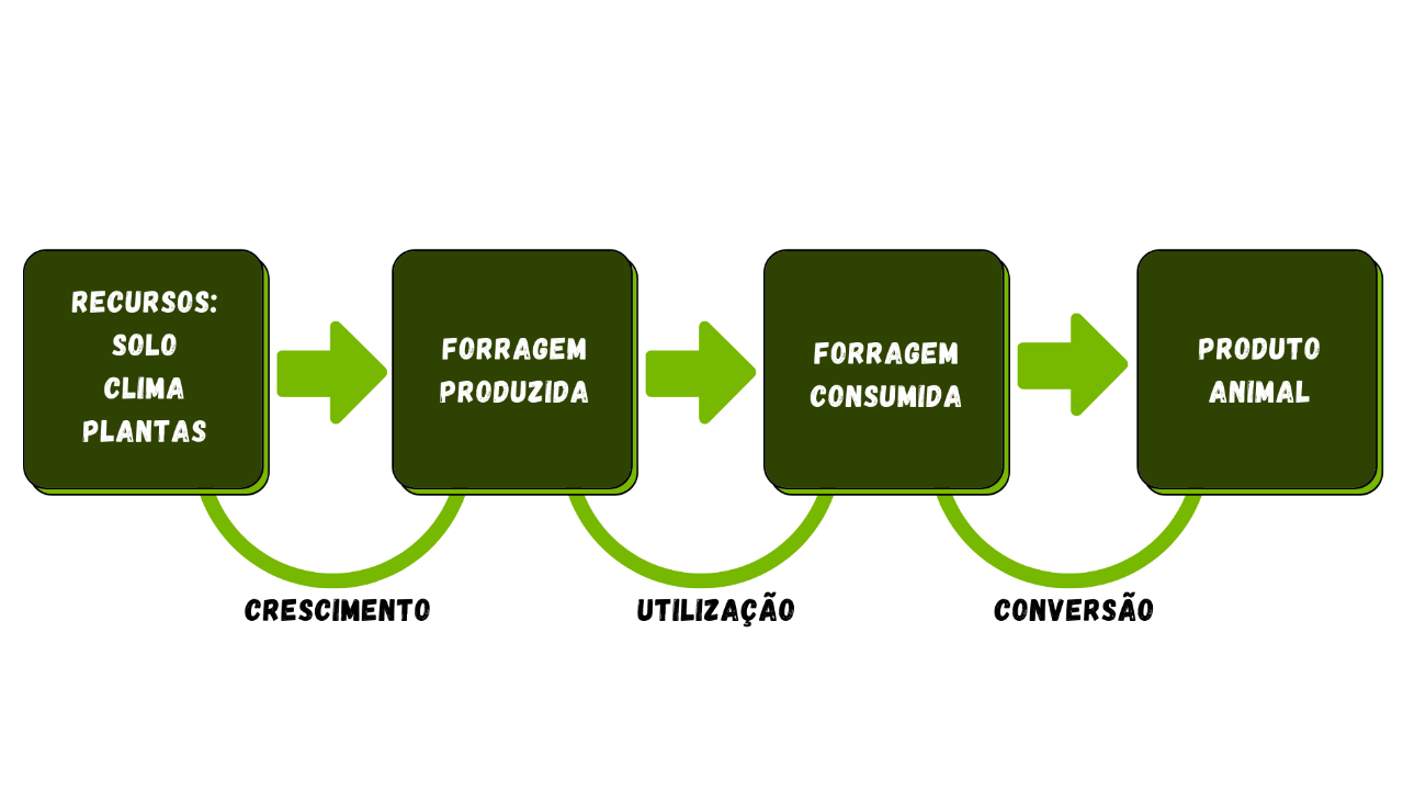 Diagrama  Descrição gerada automaticamente
