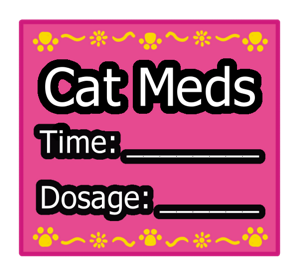 Pink Square Cat Meds Sticker Label with Yellow Border