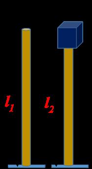 Elasticity Numericals Class 11 Physics