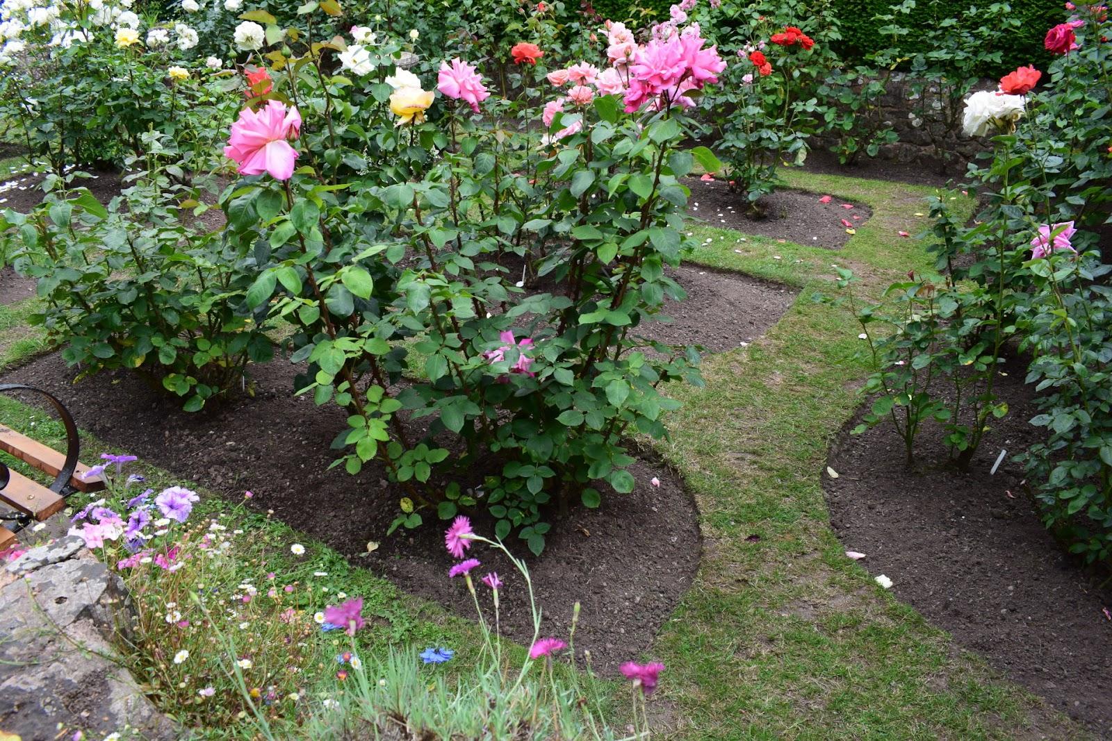 """(<img alt=""""dunster garden in Somerset"""">)"""