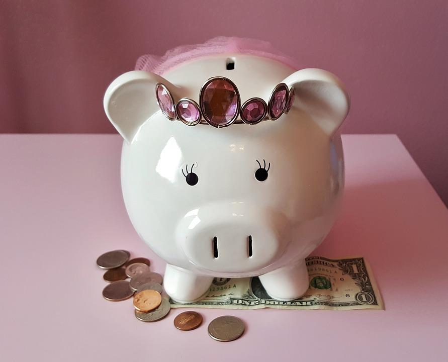 piggy-bank-1446874_960_720.jpg
