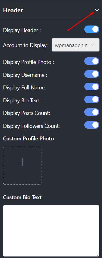 Header Instagram settings