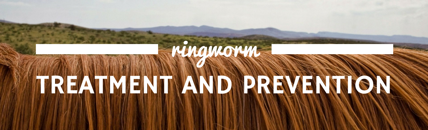 Ringworm Treatment and Prevention