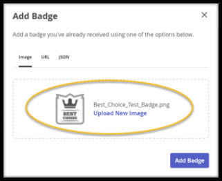 Screenshot of Add Badge Page with file uploaded