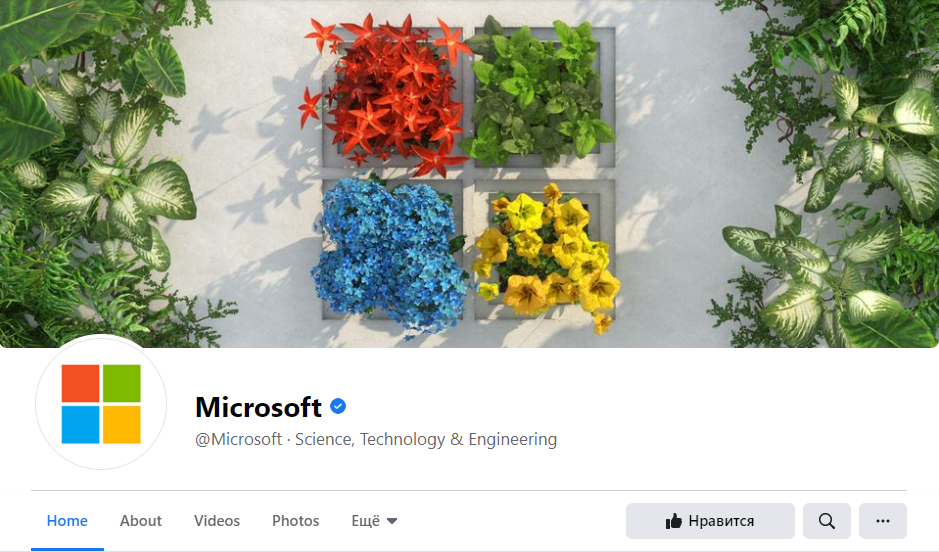 an example of a cover image and a profile picture
