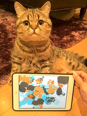 猫の肉球でスマホにタッチすると愛猫の足跡が残る!?猫と一緒に遊ぶアプリ