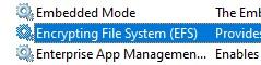 Encrypting File System (EFS)