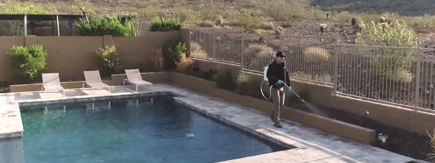 spraying for pests outside in phoenix